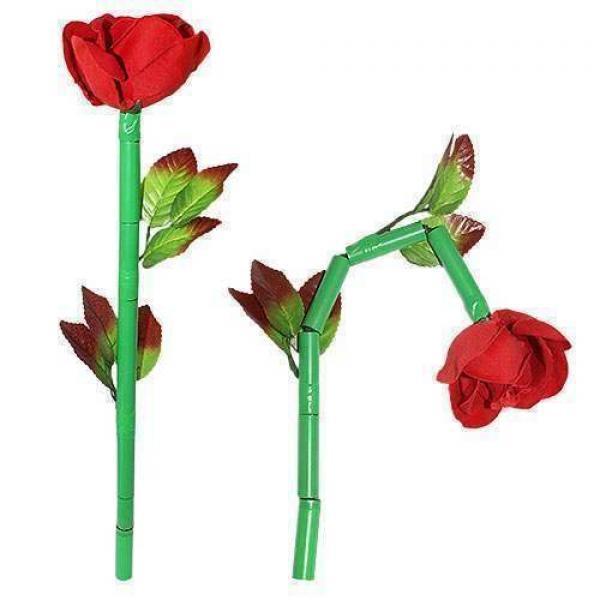 Break-Away Rose