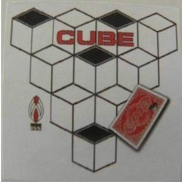 Cube by Shoot Ogawa - DVD and Gimmick