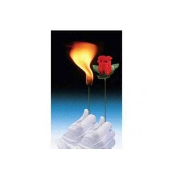 Flaming Torch to Rose - Red