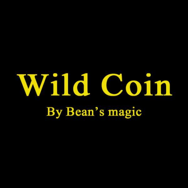 WILD COINS by Bean's Magic