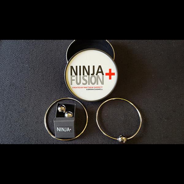 Ninja+ Fusion (With Online Instructions) by Matthew Garrett & Brian Caswell