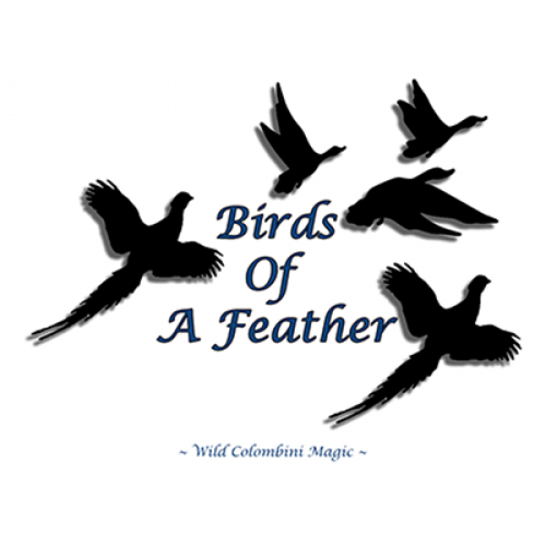 Birds Of A Feather by Wild-Colombini