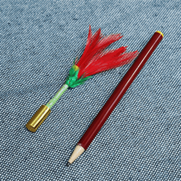 Pencil to Flower by Mr. Magic