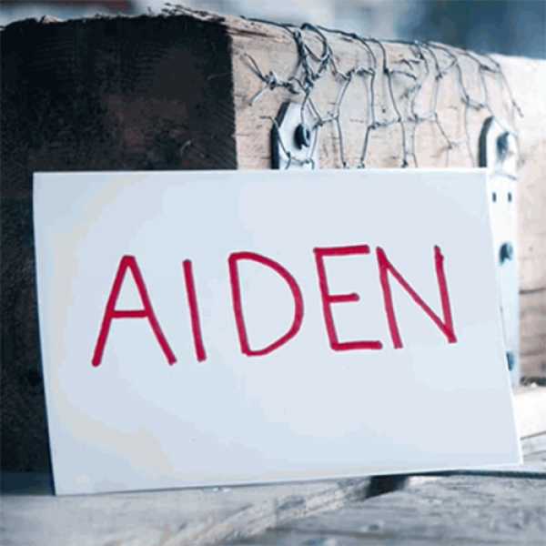 Aiden (DVD and Gimmicks) by Ryuhei Nakamura - DVD