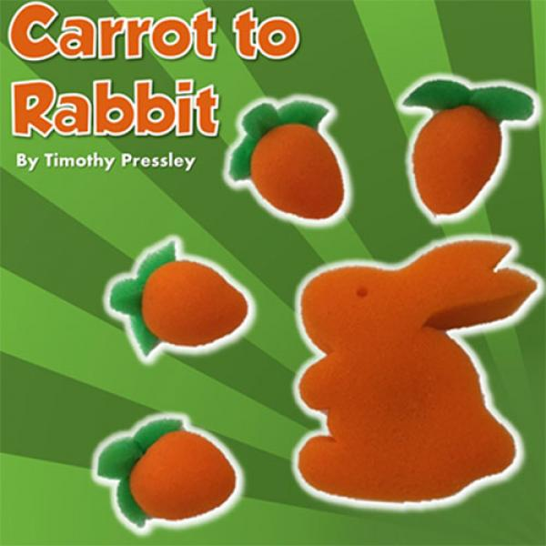 Sponge Carrot to Rabbit by Timothy Pressley and Go...