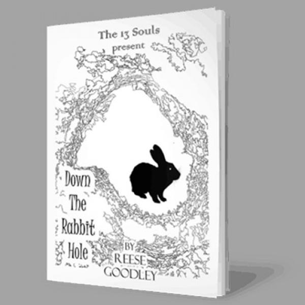 Down The Rabbit Hole by Reese Goodley - Book